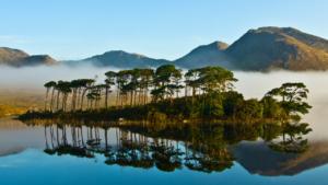 Pine island Best of Connemara full day tour
