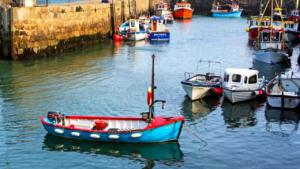 motorboat excursion to a connemara island