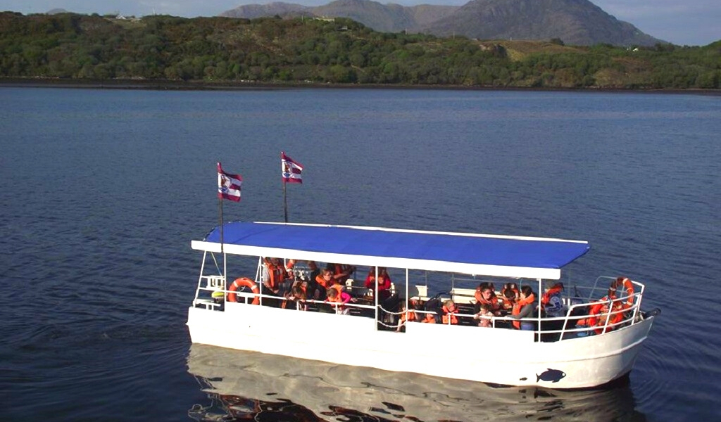 Scenic Wild Atlantic Way boat cruise, Letterfrack Bay