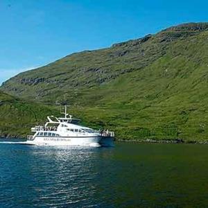 Killary Cruise