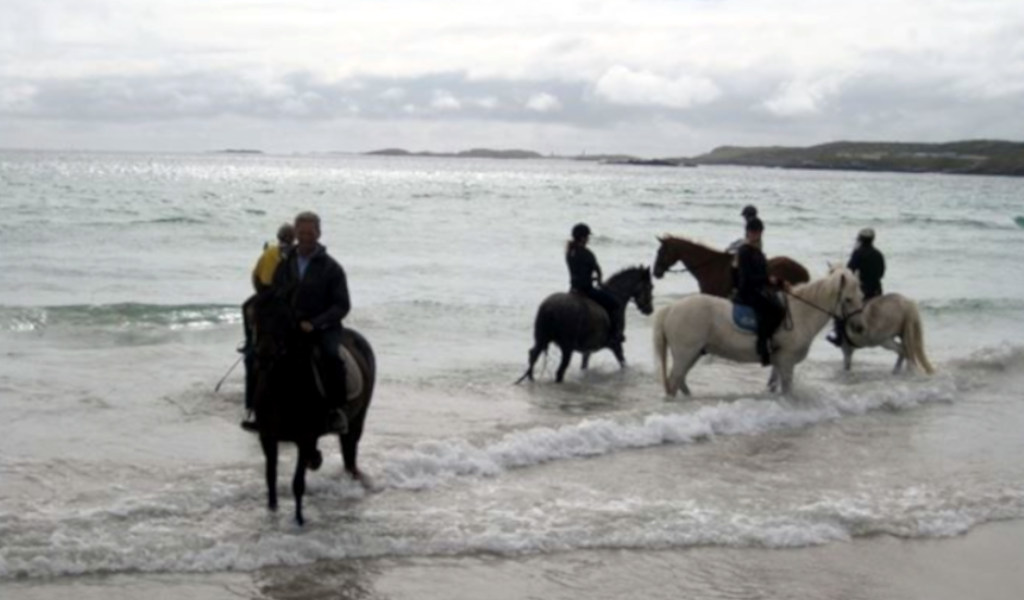 Horse Riding in Galway
