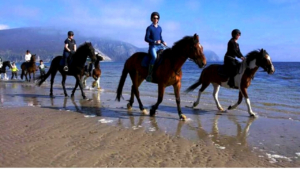 guided-beach-horse-riding-excursion-wild-atlantic-way-G3
